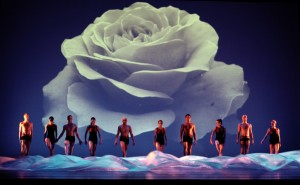 """Momix in """"reMix"""", dall'11 al 16 dicembre 2012 al Teatro Bellini di Napoli"""