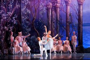 """Il lago dei cigni"""" dal 15 al 20 gennaio 2013 al Teatro Bellini di Napoli"""